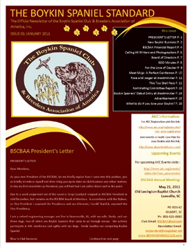 Image BSCBAA NEWSLETTER web compessed